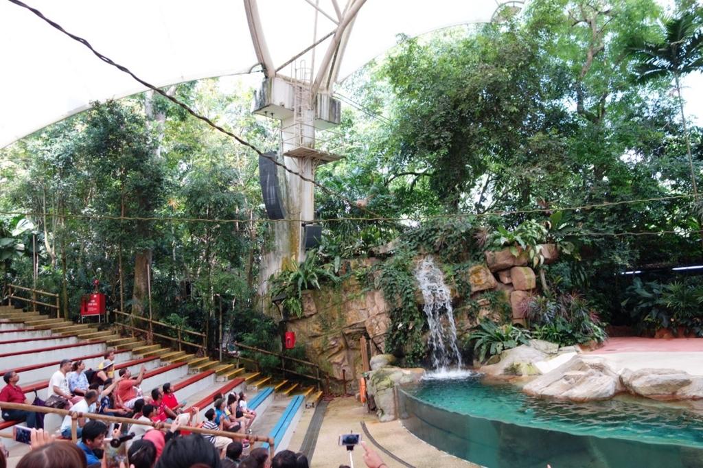 シンガポール動物園:ショーのイメージ1
