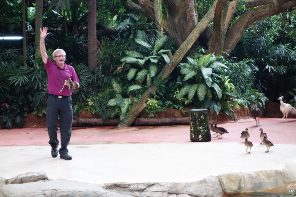 シンガポール動物園:ショーのイメージ6