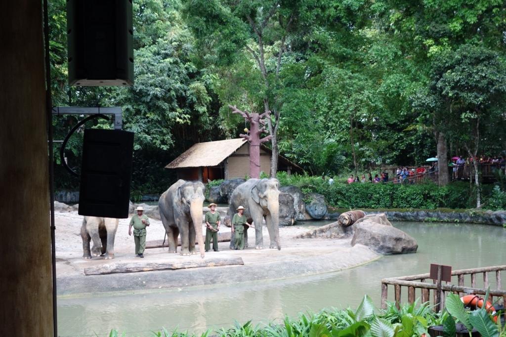 シンガポール動物園:ショーのイメージ9