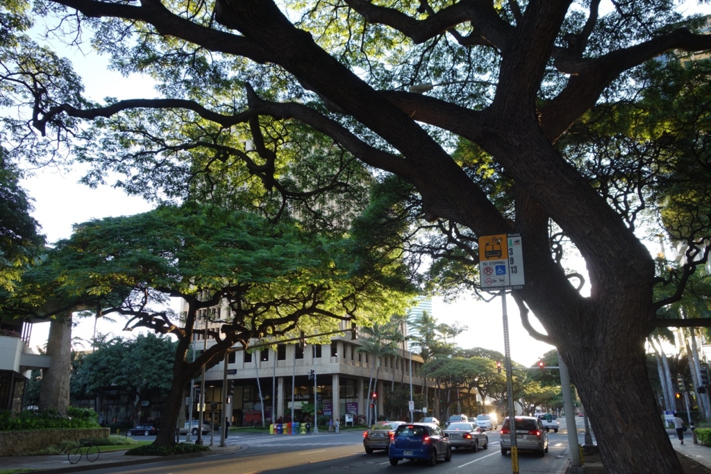 アラモアナホテル周辺のバス停