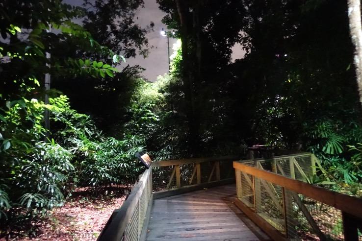 ナイトサファリ(シンガポール):トレイルコースのイメージ3