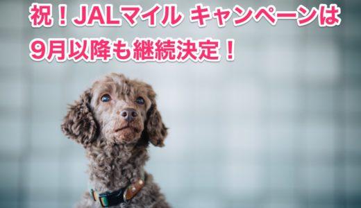 JALマイル キャンペーンは5月以降も継続決定!交換レート80%を維持!<モッピー>