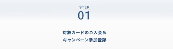 ANAカードの入会キャンペーン:ステップ1「対象カードのご入会&キャンペーン参加登録」1