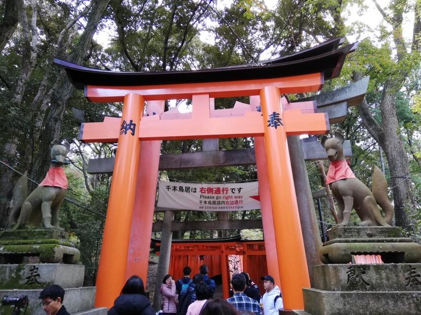 サイクリングツアー:伏見稲荷大社5