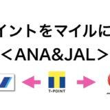 Tポイントをマイルに交換する方法!ANAとJALをまとめて解説!<JQみずほルート>