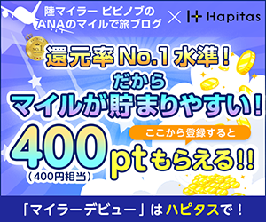 ハピタス紹介バナー(400ポイント)