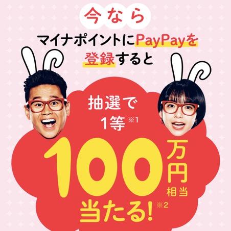 マイナポイント登録キャンペーン「PayPay」:概要