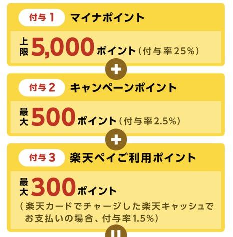 マイナポイント登録キャンペーン「楽天Pay」:詳細1