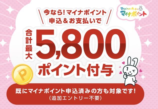 マイナポイント登録キャンペーン「楽天Pay」:概要