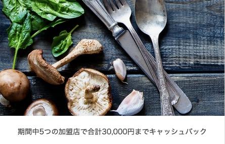 アメックスプラチナのキャンペーン「5つの加盟店で合計30,000円までキャッシュバック」