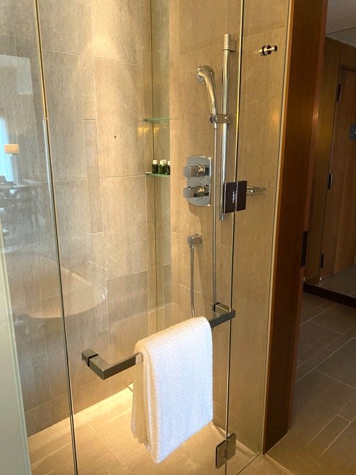 パレスホテル東京:客室(シャワーブース)