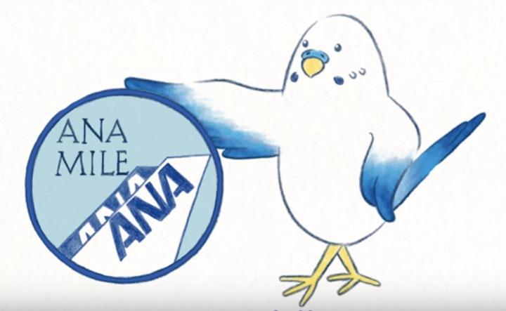 ANAスカイコインのイメージ