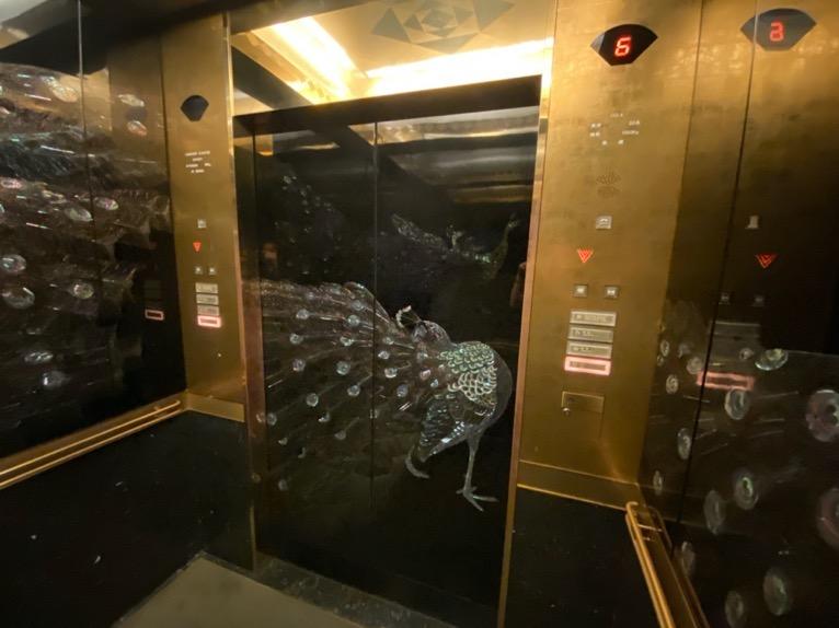 ホテル雅叙園東京:エレベーター(内観1)