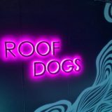 アロフト東京銀座のルーフトップバー「Roof Dogs」を体験レビュー!オープンエアで開放感抜群のおしゃれ空間!
