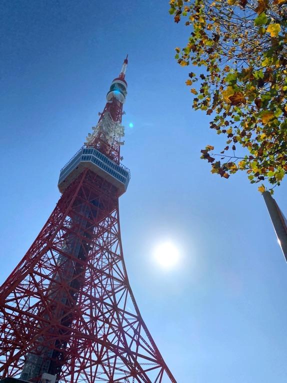東京エディション虎ノ門「朝食後の散策」:東京タワー2