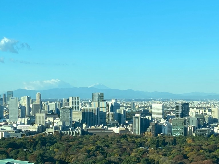 フォーシーズンズ東京大手町「客室」:眺望(富士山)