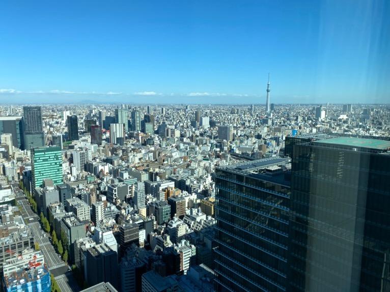 フォーシーズンズホテル東京大手町「屋内プール」:眺望
