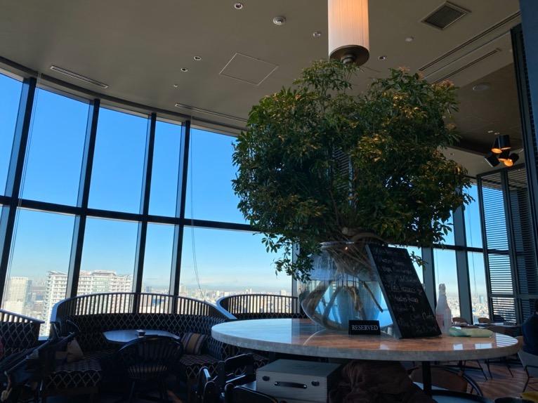 三井ガーデンホテル豊洲ベイサイドクロスの朝食:レストランの内観(観葉植物)