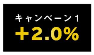 マネックスカードの発行記念キャンペーン:キャンペーン1(+2%ポイント)