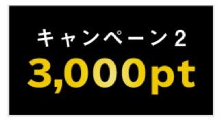 マネックスカードの発行記念キャンペーン:キャンペーン2(3,000ポイント)