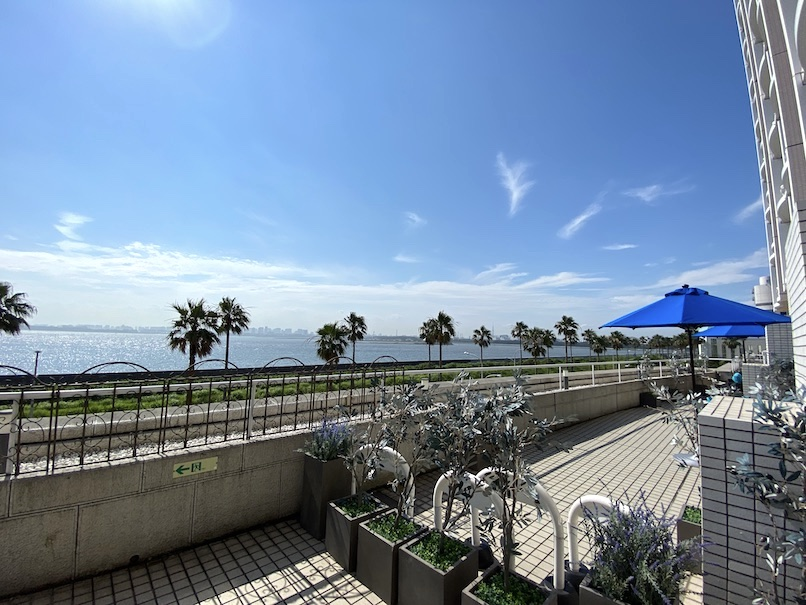 グランドニッコー東京ベイ舞浜 :アトリウム(テラスからの眺望)