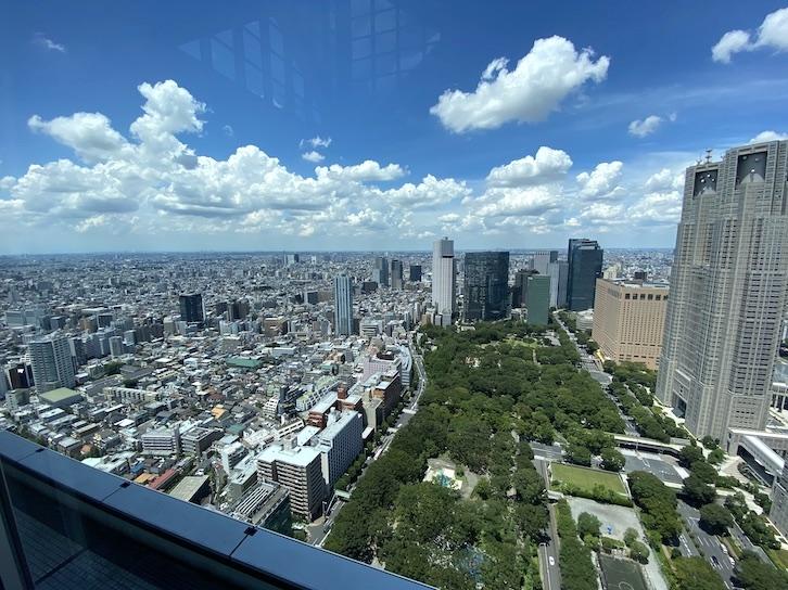 パークハイアット東京:ピークラウンジからの眺望